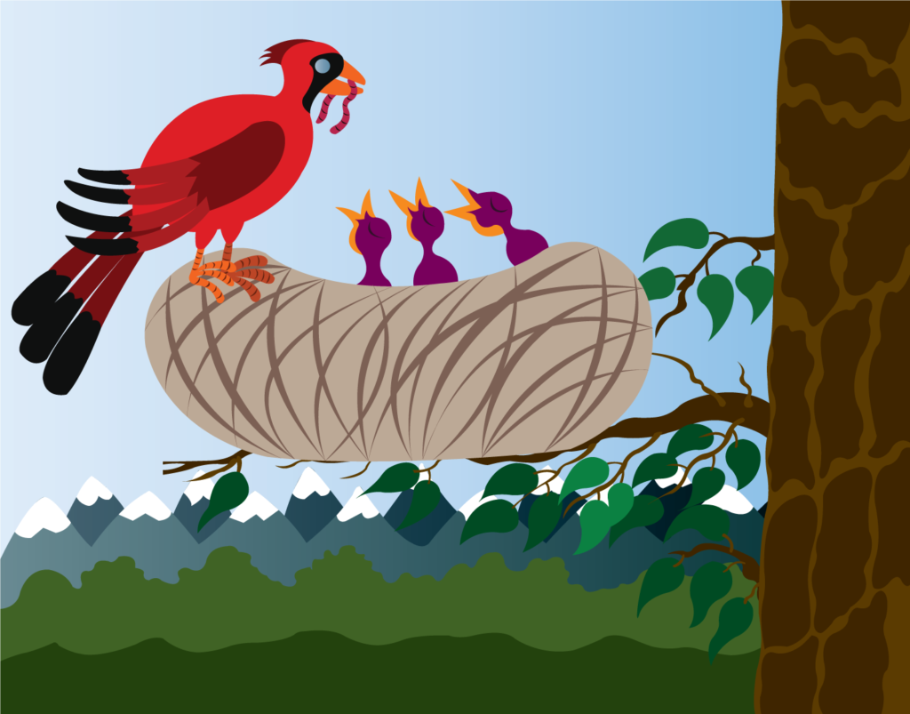 Vector Issue #6298: Food for the Young, A red Cardinal Bird delivering food to its chics,