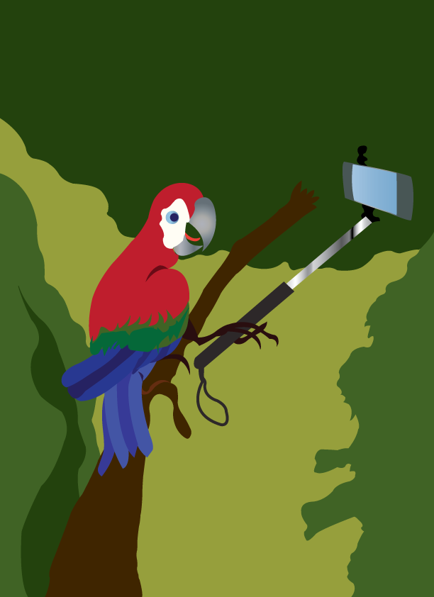 Vector Issue #6388: bird's selfie, a bird of paradise taking a selfie, its trying to hold the camera with its feet,