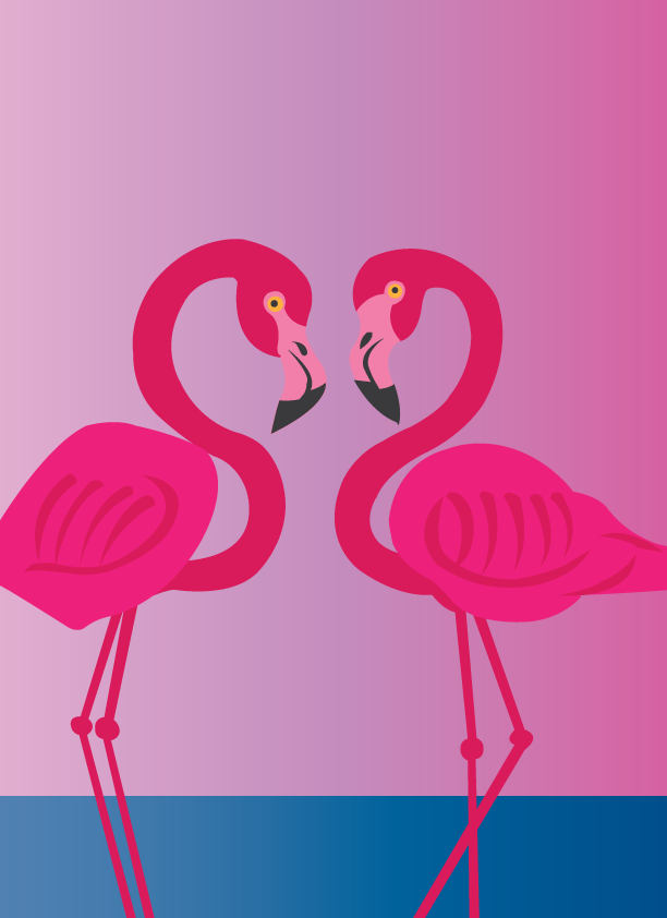 Vector Issue #6392: the love birds 1, flamingos wadding in shallow waters,