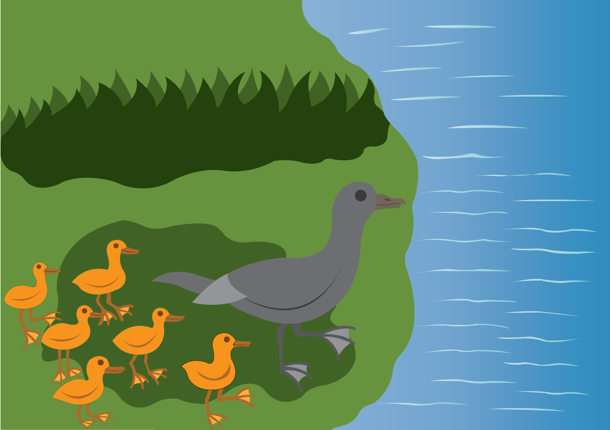 Vector Issue #6510: follow the leader, a duck leading its chics to water