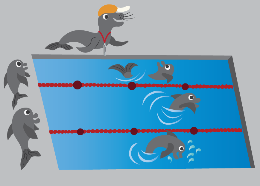Vector Issue #6579: Swimming lessons 1-dolphins swimming in a competition