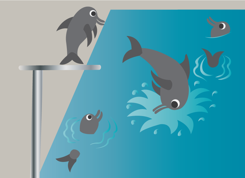 Vector Issue #6580: Swimming lessons 2-dolphins enjoying themselves in a swimming pool