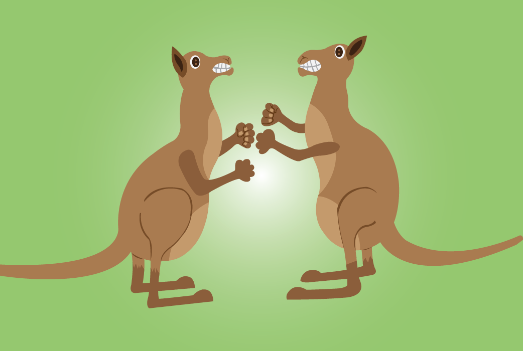 Vector Issue #6591: the kick boxer-kangaroos fighting one another with fists and kicks